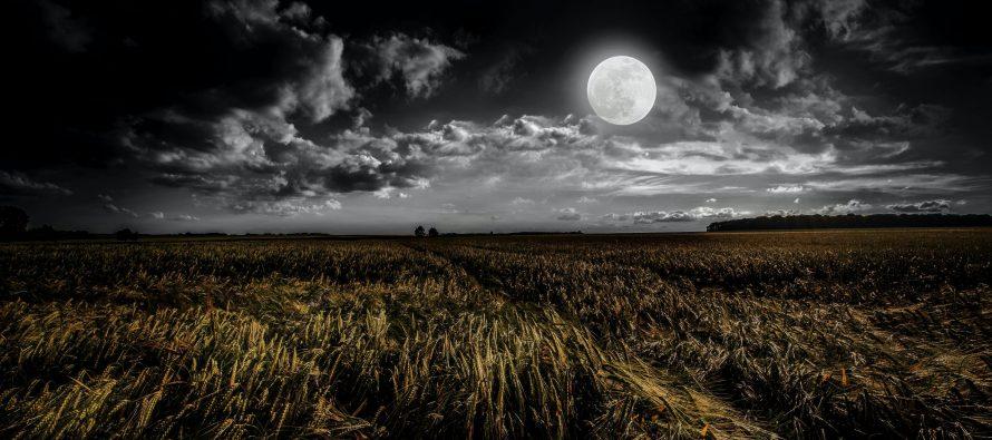 صلاة الليل في رمضان وأحكامها